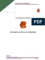 relatorio_ipi[1]