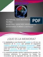 Memoria Expo Ada de Laguna