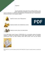 ANTOLOGIA de Historia de La Aruqitectura en PDF