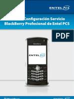 Guia Configuracion Blackberry Profesional III