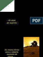 20071109PPT_asas_oooooooooo