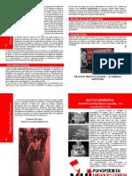 Boletín 4 - MUI UACH 2011