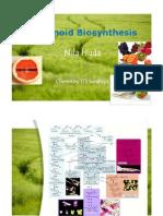 Flavonoid biosynthesis-Nila