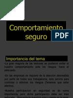 COMPORTAMIENTO-SEGURO