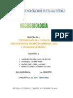 23099813-Curva-de-Crecimiento-de-E-Coli-y-Levadura-Candida