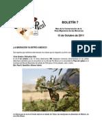Boletín 7 de correo real de las mariposas monarca. otoño 2011