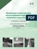 Проблемы и перспективы использования НПГ в РФ