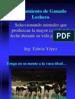 juzgando-ganado-lechero-1205369859198428-4