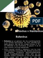 RotavirusvHantavirus