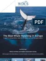 Whalewatching Guide