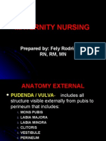 Maternity Nursing Lecture Presentation