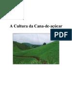 A Cultura da Cana-de-açúcar