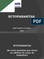 Pediculus humanus e Aedes