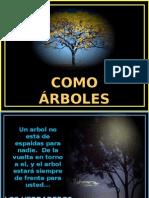 arboles_y_amigos