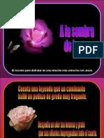 a_la_sombra_de_la_rosa_pps