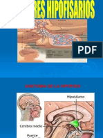 TUMORES HIPOFISIARIOS Dra. Liduvina