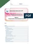 Aplicaciones M I Componentes y Funcionamiento de La PC