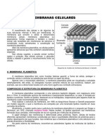 membranaplasmatica-110726203922-phpapp02
