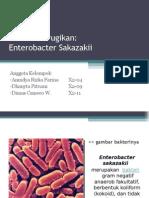 Bakteri Merugikan