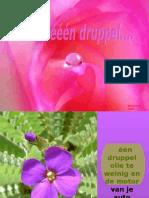 druppelA[RV]