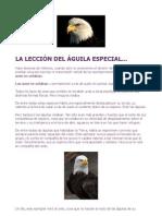 LA LECCIÓN DEL ÁGUILA ESPECIAL