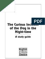 Curious Full Publication