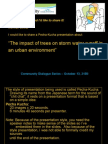 The impact of trees on storm water runoff in an urban environment