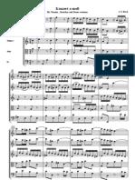 Bach Concerto Violin a Minor