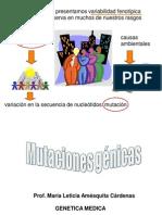 04 Mutaciones génicas