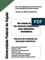 Relatório_Pesquisa