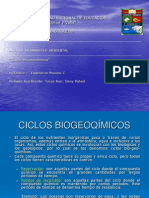 Ciclos Biogeoquímicos CICLO DEL CARBONO