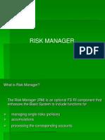 Risk Manger Presentation