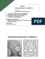 Bases Biolojicas de La Conducta