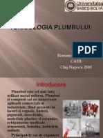 Toxicologia plumbului