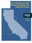 2010 Lake County Alcohol and Drug Risk Report