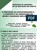 apresentaçao_mestrado