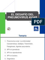 Pneumovirus_aviar_(Esp)