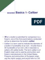 Ballistics Ppt.08