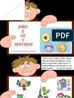 João-e-os-5-sentidos