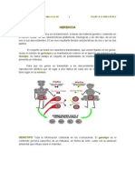 EMBRIOLOGÍA GENETICA Y MOLECULAR