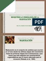 3aclasemaduracion1parte-100824155015-phpapp02