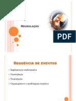 neurulação[1]