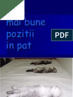 Romanesti - Cele_mai_tari_pozitii - (Stel)