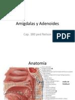 Amígdalas y Adenoides