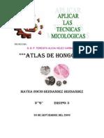 Atlas Original de Micologia