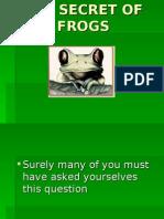 secretfrogs