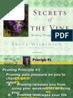 Secret of the Vine - Part 5