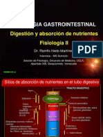 absorcion  nutrientes