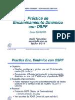 ospf2005