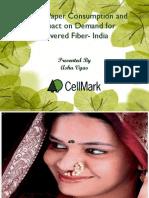 Paper Consumption India